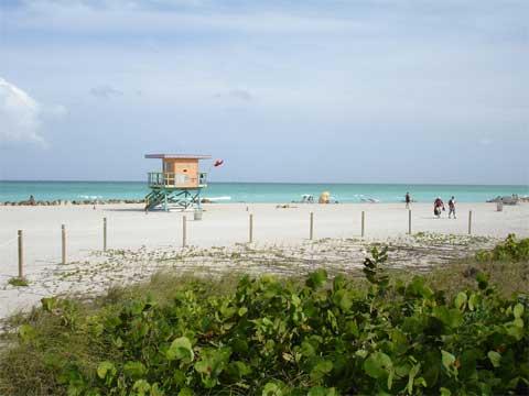 Buying Land in Florida