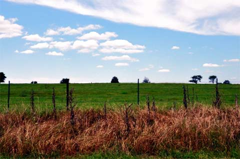 Recreational Texas Land